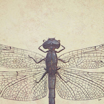 Dragonfly Poster by Patricia Pinto