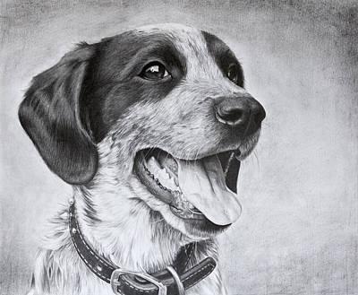 Drawing Of A Puppy Poster by Karen Broemmelsick