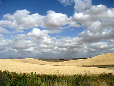 Drawn To The Palouse Clouds Poster by Anne Mott