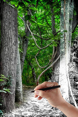 Drawn To The Woods With Imagination Poster