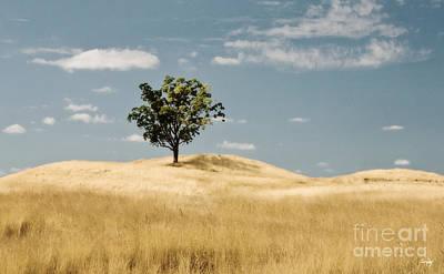 Dream Tree Poster by Scott Pellegrin