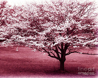 Dreamy Surreal Pink South Carolina Trees  Poster by Kathy Fornal