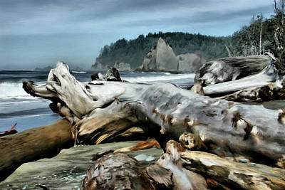 Drift Wood On Rialto Beach Poster