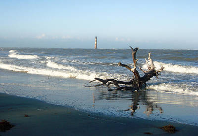 Poster featuring the photograph Driftwood And Morris Island Lighthouse by Ellen Tully