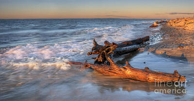 Driftwood On Lake Superior Poster by Twenty Two North Photography