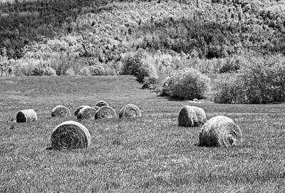 Dry Hay Bales In Maine Farm Field Poster