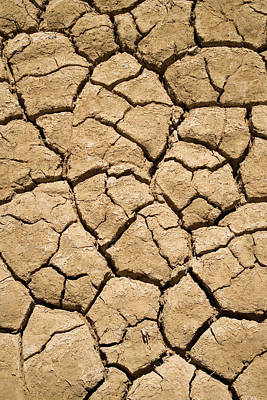 Dry Irrigation Pond, Strzelecki Track Poster by David Wall