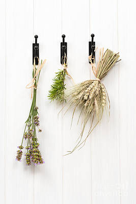 Drying Herbs With Lavender Poster by Amanda Elwell