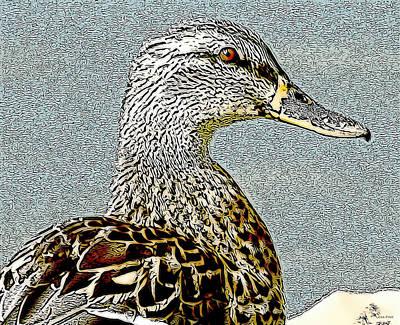 Duck Art Tribal Mallard II Poster by Lesa Fine