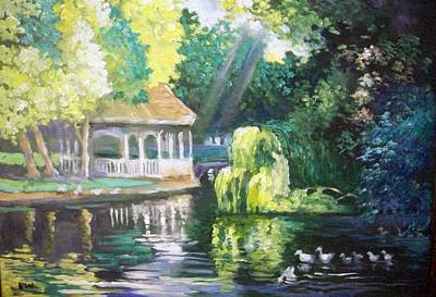 Duck Pond Stephens Green  Park Dublin Poster
