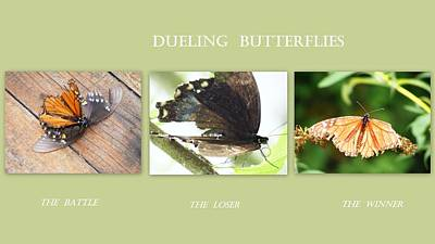 Poster featuring the photograph Dueling Butterflies Collage by Margie Avellino