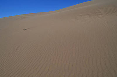 Dumont Dunes Poster by See My  Photos