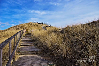 Dune With A View Poster by Angela Doelling AD DESIGN Photo and PhotoArt