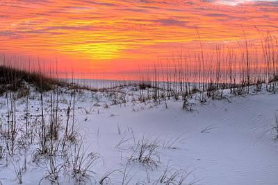 Dunes Of Orange Beach Poster