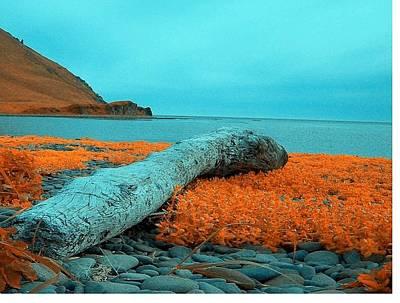 Poster featuring the photograph Dutch Harbor Alaska by Yul Olaivar