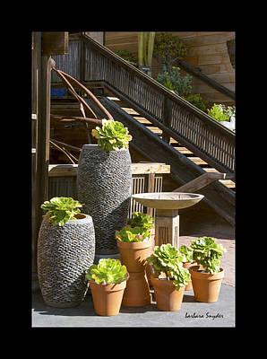 Duvet The Garden Gallery Morro Bay California  Poster