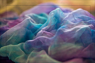 Poster featuring the photograph Dyed Silk by Liz  Alderdice