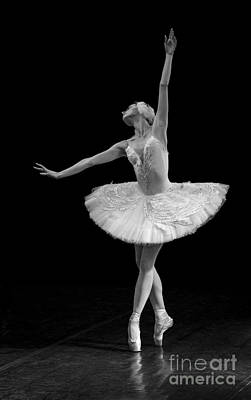 Dying Swan 9. Poster