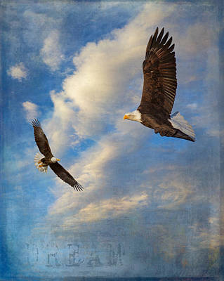 Eagle Dream Poster by Angie Vogel