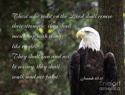 Eagle Scripture Isaiah Poster