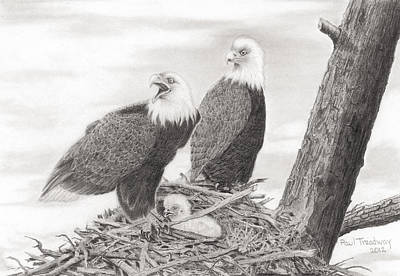 Eagles' Nest Poster by Paul Treadway