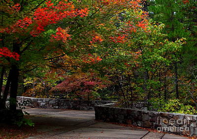 Early Fall At Talimena Park Poster by Robert Frederick