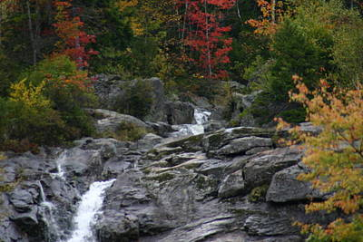 Poster featuring the photograph Early Fall Waterfall by Denyse Duhaime