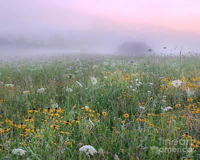 Early Morning Meadow Poster by Wanda Krack