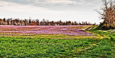 Poster featuring the photograph Early Spring Field by Greg Jackson