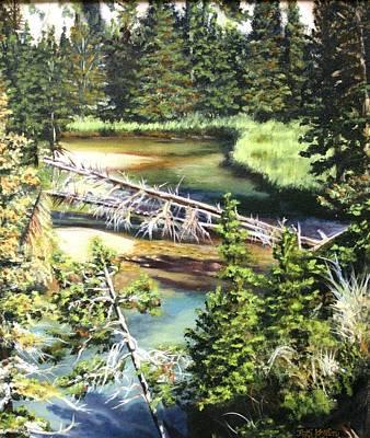 East Rosebud Inlet Stream Poster by Patti Gordon
