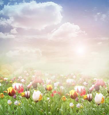 Easter Spring  Background Poster