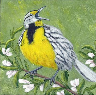 Eastern Meadowlark Poster