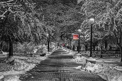 Eastern Path With Red Poster by Mark Kiver