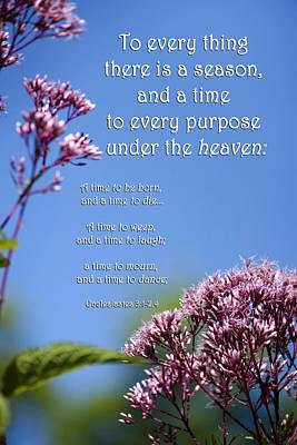 Ecclesiastes 3-1 Poster by Christina Rollo