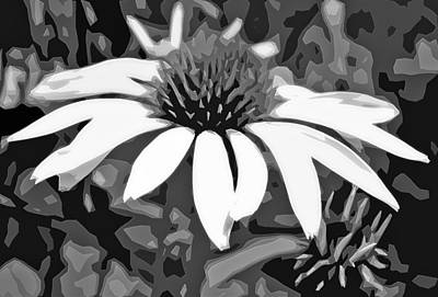 Poster featuring the photograph Echinacea - Digital Art by Ellen Tully