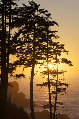Ecola Point Sunset Poster by Greg Vaughn