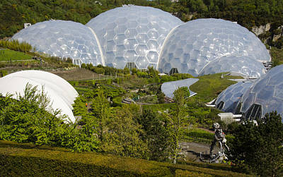 Eden Project Domes Cornwall England Poster by Alvin Telser