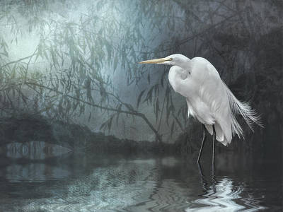 Egret In Moonlight Poster