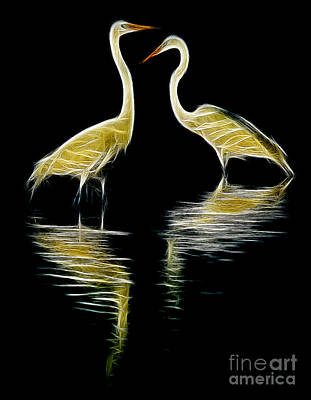 Egret Pair Poster by Jerry Fornarotto