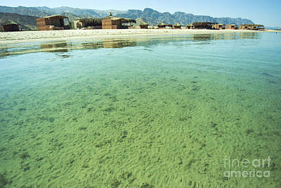Egypt Sinai Beach Resort Poster