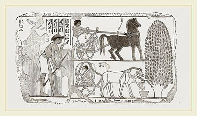 Egyptian Painting Poster by Litz Collection