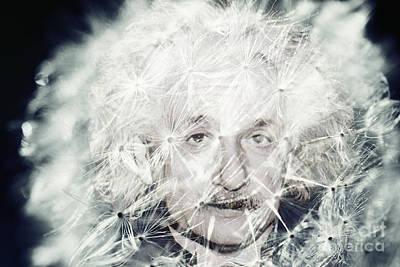 Einstein Dandy Poster