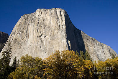 Poster featuring the photograph El Capitan In Yosemite National Park by David Millenheft