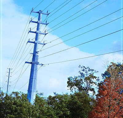 Electric Poles Wild Fall Colors Trees Skyview Sky Bluesky  Decorations Deco Artistic By Navinjoshi   Poster by Navin Joshi