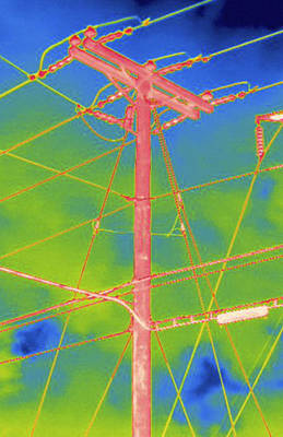 Electrical Wires And Pole, Thermogram Poster by Science Stock Photography
