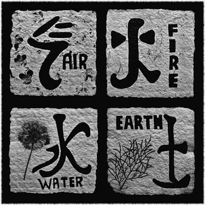 Elements Bw Poster by Barbara St Jean