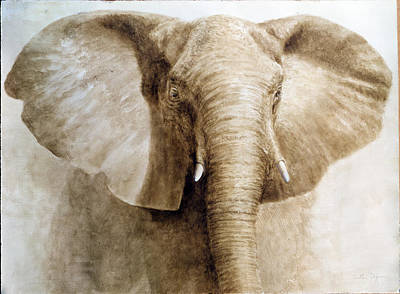 Elephant, 2004 Acrylic On Paper Poster