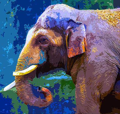 Elephant Poster by Brian Stevens