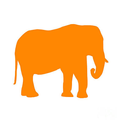 Elephant In Orange And White Poster