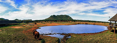 Elephant Near A Pond In Tsavo East Poster by Panoramic Images